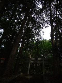 6月11日 記事用 神社2.JPG