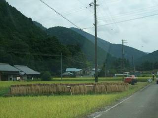 9月13日 記事用 風景.JPG